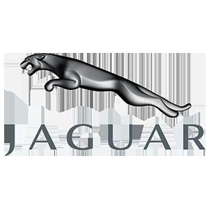 Jaguar Servis Servis