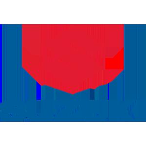 Suzuki Servis Servis